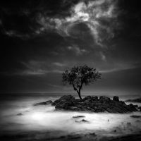 still stand by arayo