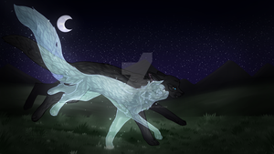 [Warrior Cats] Running with the stars by TerrorPussy