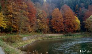 Trail near Dunajec river by KarolinaGlod
