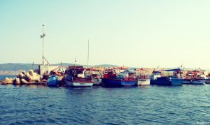 Nessebar Bay 2007 by Anucci