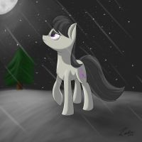 Chilly night air by lachlan765