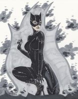 Catwoman by BrianVander