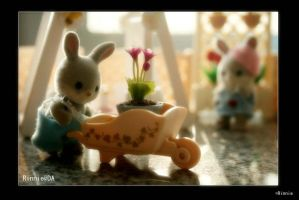 Sylvanian. The Garden01 by CocoRinnie