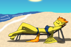 Relaxing on the Beach by Stormbadger