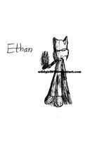 Ethan's Powers by wildgirlN