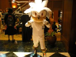 Kumoricon 2010: Silver by Red-Supernova64