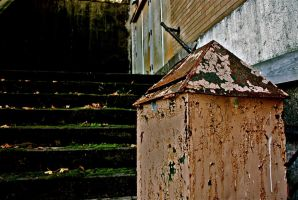 Dispose of Trash Properly by normrichards