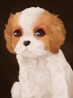 Painting of Dog by tea52