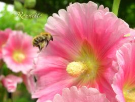 Bzzzz by Rounette