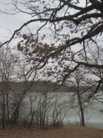 Trees and Lake 2 by r-a-i-n-y