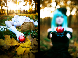 Bad apple by Letaur