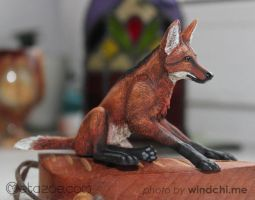 Maned wolf 2 by metazoe