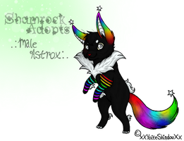 Ace by Shamrock-Adopts-Pets