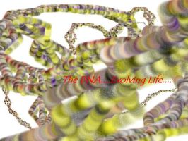 Unravelling the DNA by indu111