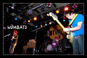 The Wombats by Jason010