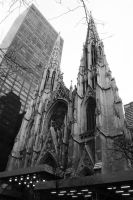 Saint Patrick's Cathedral by zstamey84