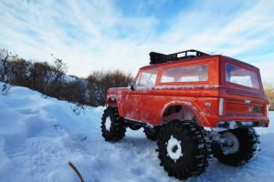 Bronco In Winter by BobTheWrench