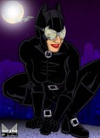 Catwoman Prowls by wondermanrules