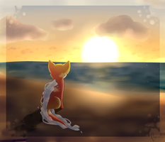 Sunset by flaries