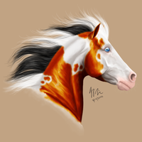 Paint for mixedspirit by lefty59