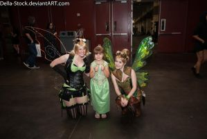 Fairies at Megacon by Della-Stock