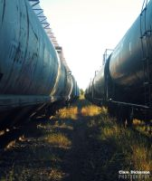 Trains by ClareDickerson