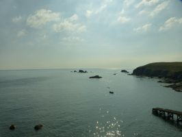 Lizard Point: View 22 by yaschaeffer