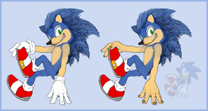 .:Sonic The Realhog 2:. by SiscoCentral1915