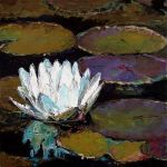 Water Lily 04 by szklanytygrys