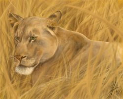 Majesty on the Savannah by seppy