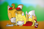 Sleeping Foxes by Toad900
