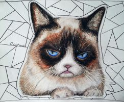 Grumpy cat by Dratova