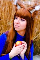 It's mine :-P Horo Spice and wolf by Yoruichi22
