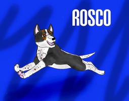 Rosco by BlackTailwolf