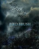 BIRD BRUSH by Moonglowlilly