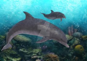Dolphins Under the Sea by Elle-Arden
