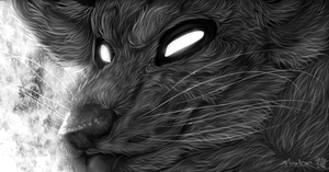 The world is so black and white by Marlonthegreenwolf