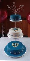 Cardiff Bluebirds cake by Dragonsanddaffodils