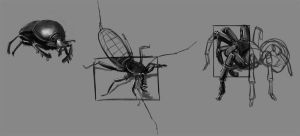 Bugs Sketches by Fieldweeble