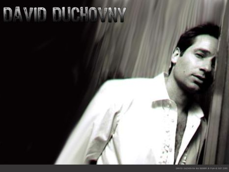 David Duchovny leaning sexy by serra