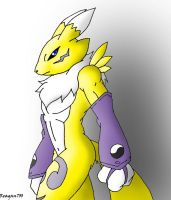 male Renamon by Reagan700