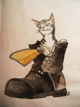 Puss in Boot by Borovous