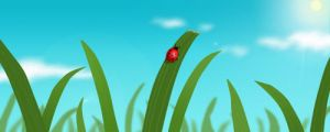 Ladybug by MikeL16