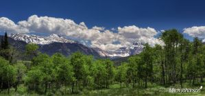 Aspen Meadows and Mountains  by mjohanson