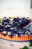 Blueberry Pie_ by AbateSs