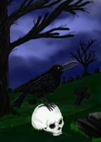 Raven and Skull by December012