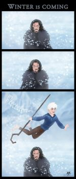 Winter Is Coming by DolphyDolphiana