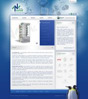 norad group website by anca-v