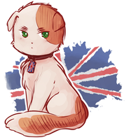 ID by ask-englandcat