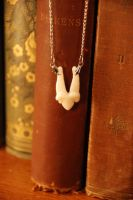 Mountain Lion Tooth Necklace by kittykat01